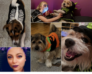 five pictures. dog wearing a skeleton costume. girl and dog dressed up for halloween. lady with snapchat filter. dog wearing halloween jumper. dog wearing monster costume.