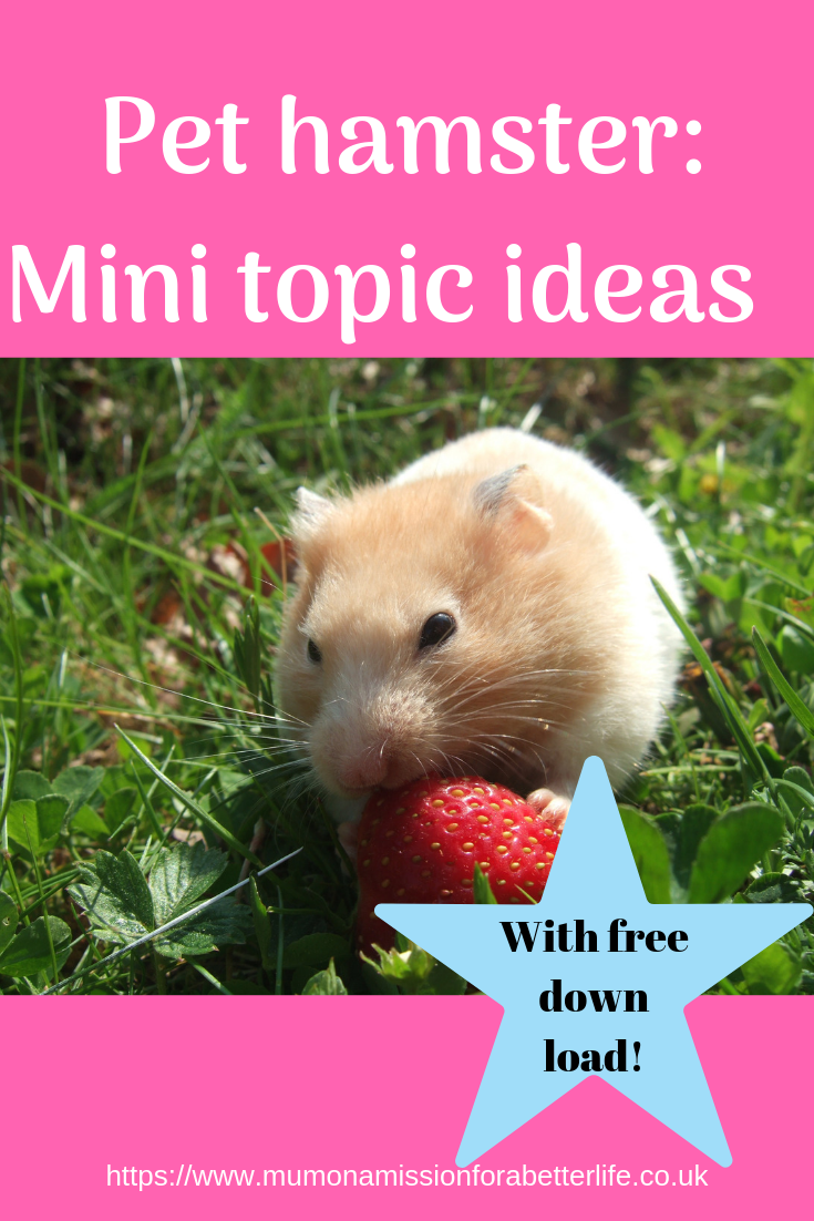 pet hamster - mini unit study/topic ideas