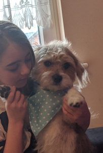 Girl holding an upright Jack Russel cross who is wearing a light blue dog bandanna