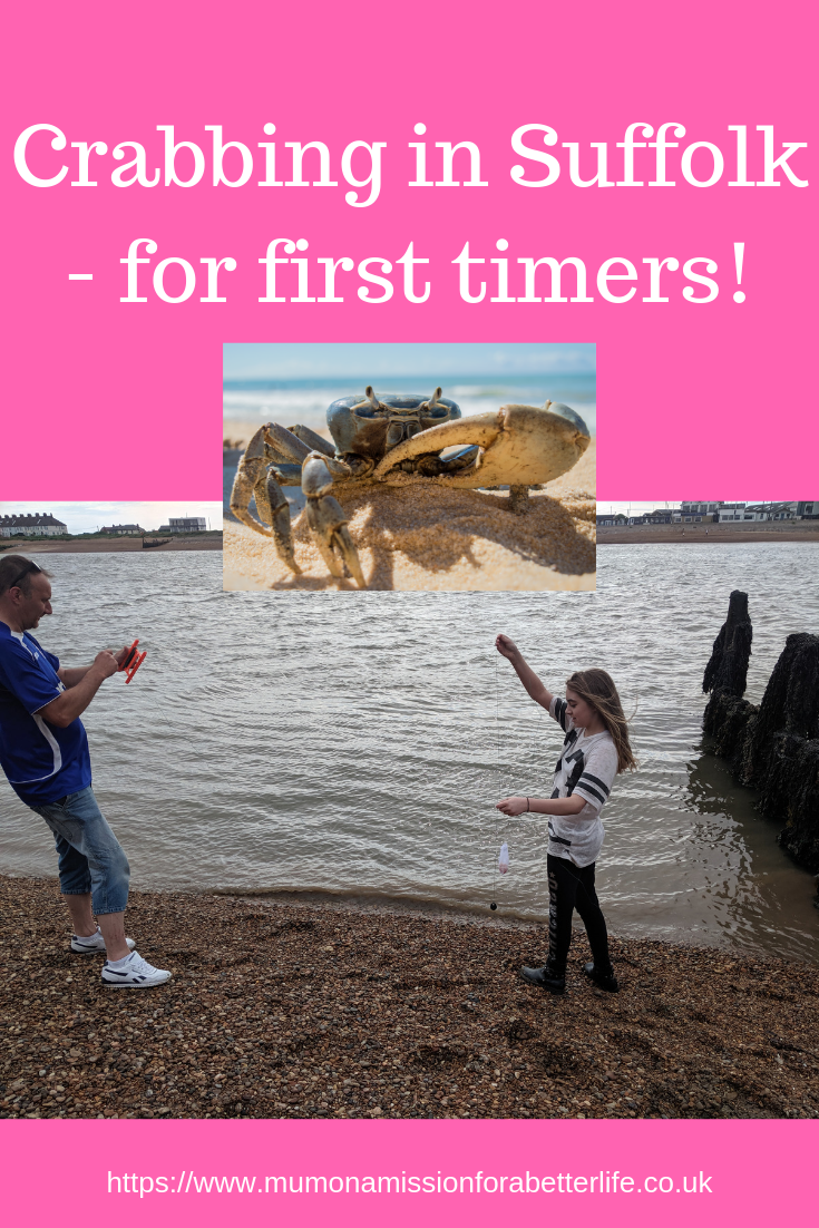 Man and his daughter on the beach crabbing and a small image of a crab