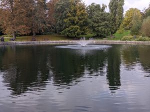 A pond with a small fountain in the middle