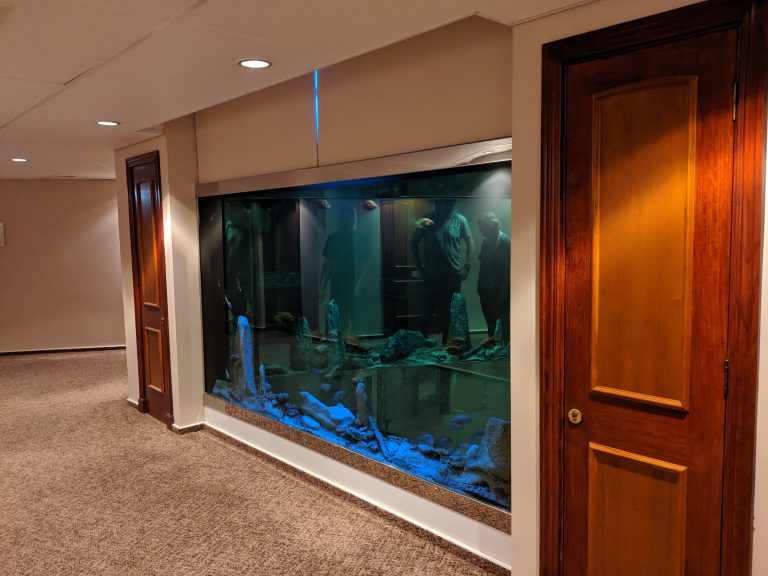 A corridor in the hotel at the blogging conference with a fish tank built into the wall