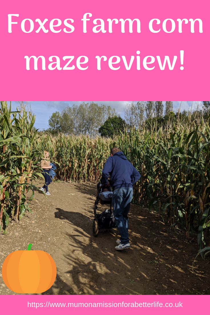 Man pushing pram through a corn maze