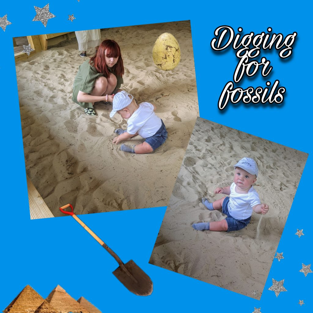 Sandpit fun digging for dino fossils
