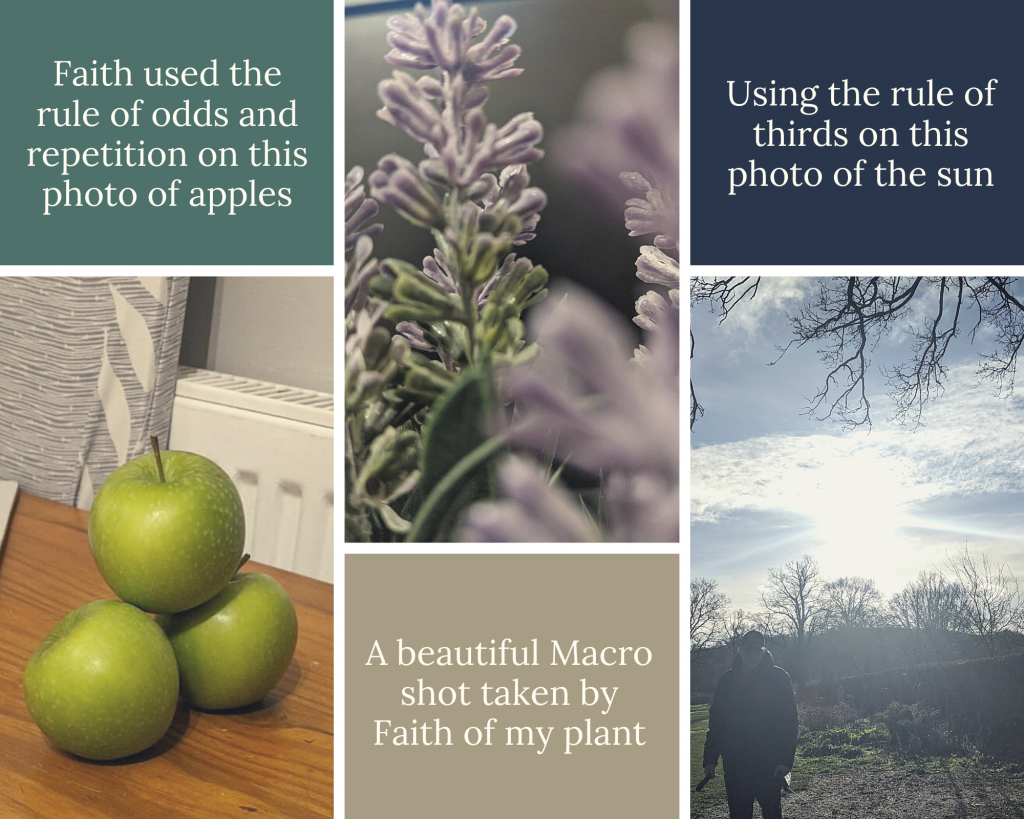 3 photographs showing different compositions. 1 - three apples, one on top of two. 2. Close up of purple flowers. 3. Picture of the sun in the sky with a man in the corner.